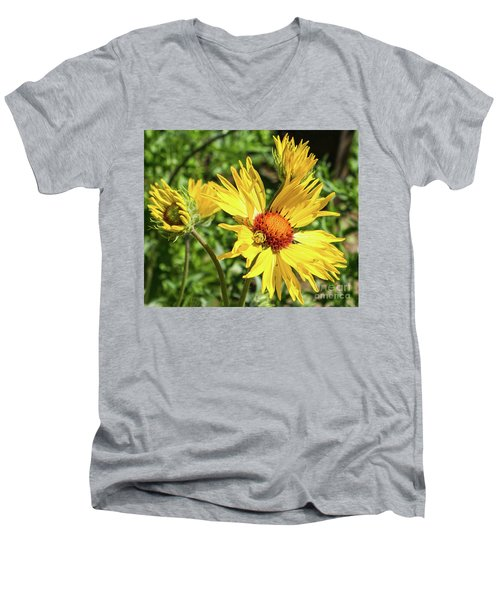 Patient Spider Men's V-Neck T-Shirt
