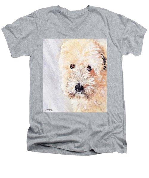 Pazzo Men's V-Neck T-Shirt