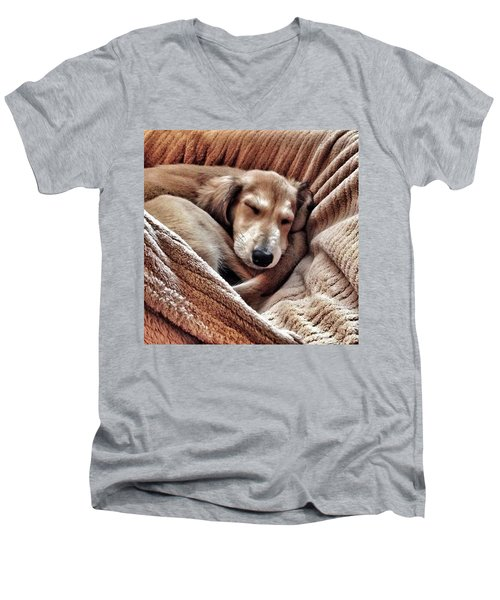 Peace At Last #saluki Men's V-Neck T-Shirt