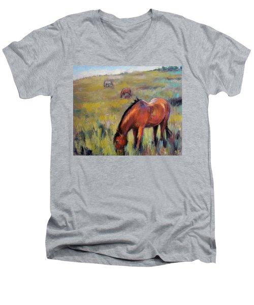 Peace On The Mountain Men's V-Neck T-Shirt