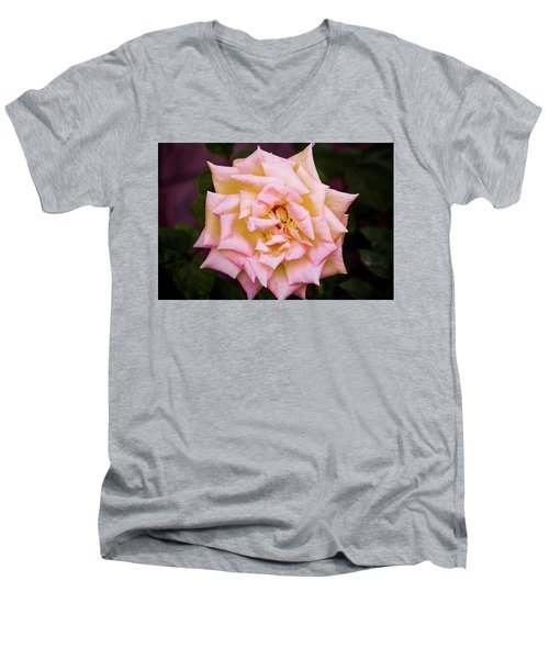 Men's V-Neck T-Shirt featuring the photograph Peace Rose by Donna G Smith
