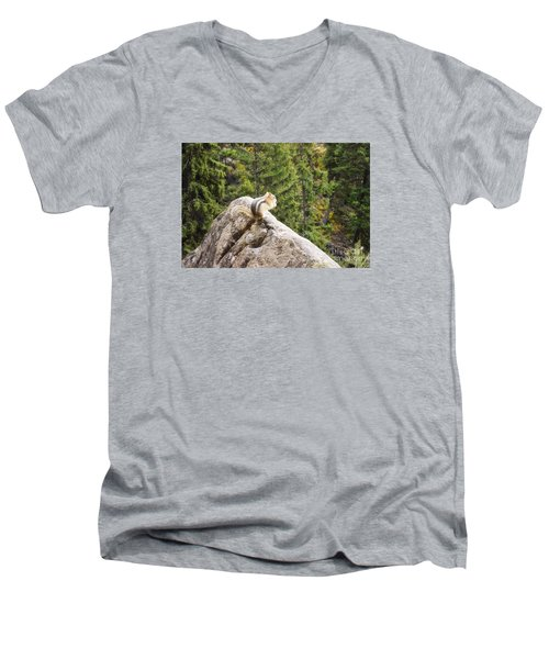 Men's V-Neck T-Shirt featuring the photograph Peaceful Enjoyment by Janie Johnson
