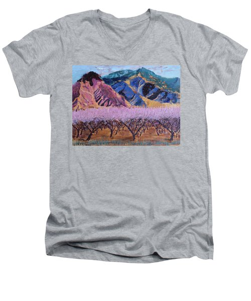 Peach Orchard Canigou Men's V-Neck T-Shirt