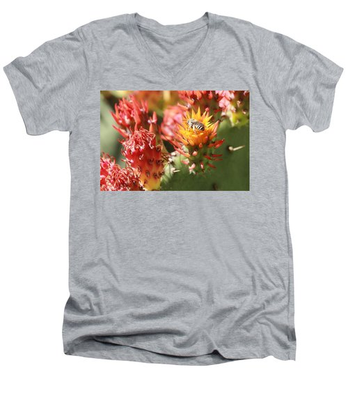 Pear Bee Men's V-Neck T-Shirt