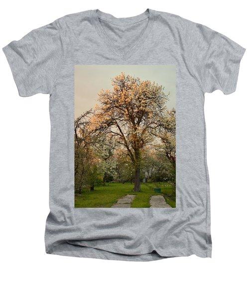 Pear Spring Sunrise Men's V-Neck T-Shirt by Henryk Gorecki