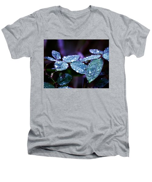 Pearls Of Nature Men's V-Neck T-Shirt