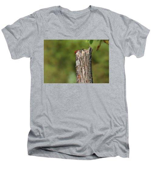 Peek A Boo Pileated Woodpecker Men's V-Neck T-Shirt