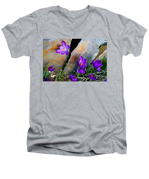 Peek Men's V-Neck T-Shirt by Kathryn Meyer