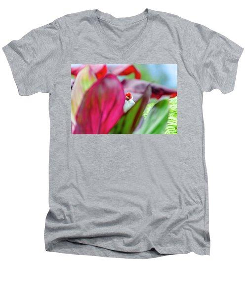 Peeking Between The Leaves Men's V-Neck T-Shirt