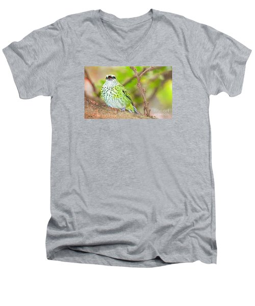 Men's V-Neck T-Shirt featuring the photograph Peep by Judy Kay