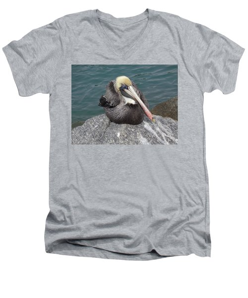 Men's V-Neck T-Shirt featuring the photograph Pelican by John Mathews