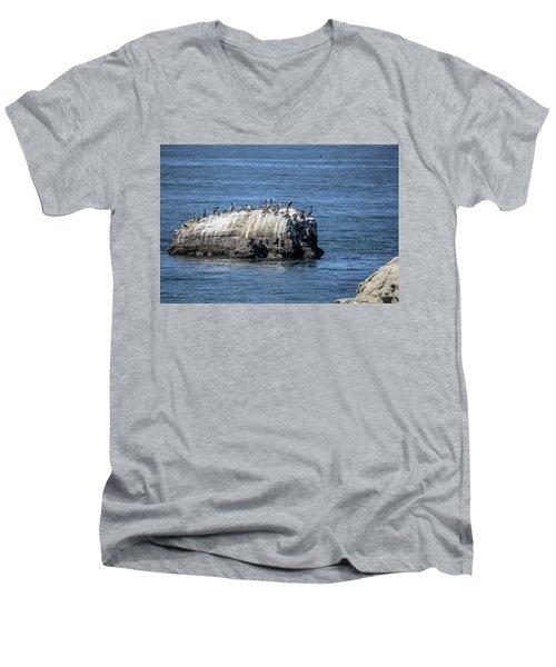 Pelican Rock Men's V-Neck T-Shirt