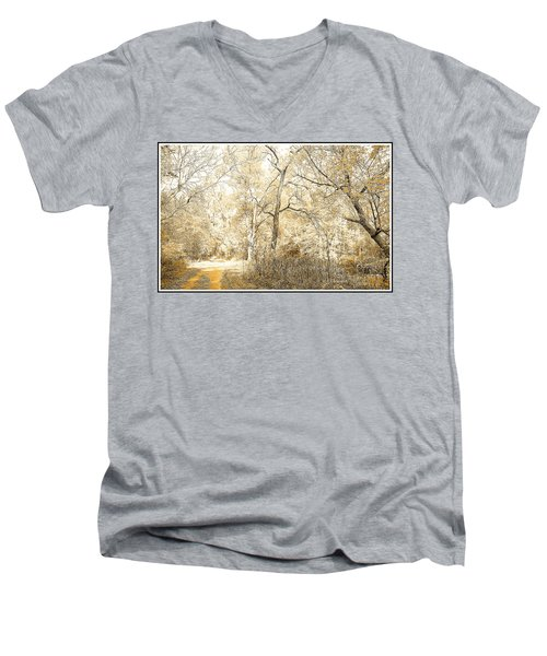 Pennsylvania Autumn Woods Men's V-Neck T-Shirt by A Gurmankin