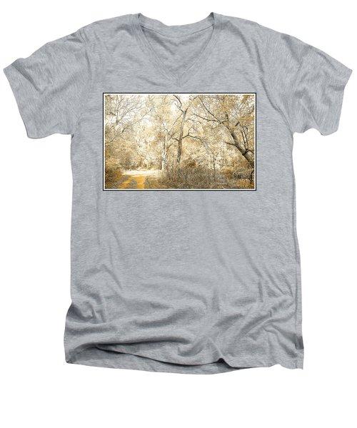 Pennsylvania Autumn Woods Men's V-Neck T-Shirt