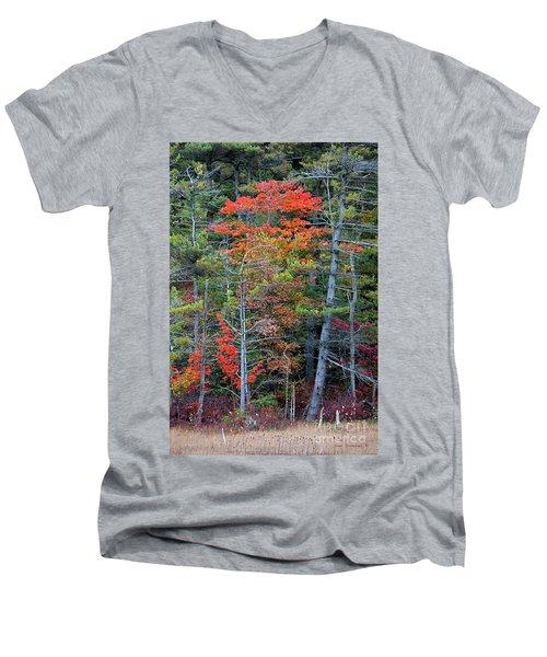 Pennsylvania Laurel Highlands Autumn Men's V-Neck T-Shirt by John Stephens
