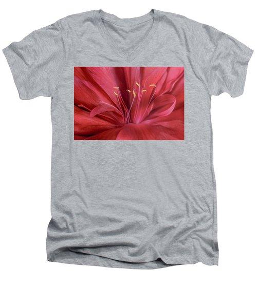 Peonia Insight Men's V-Neck T-Shirt