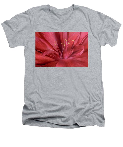 Peonia Insight Men's V-Neck T-Shirt