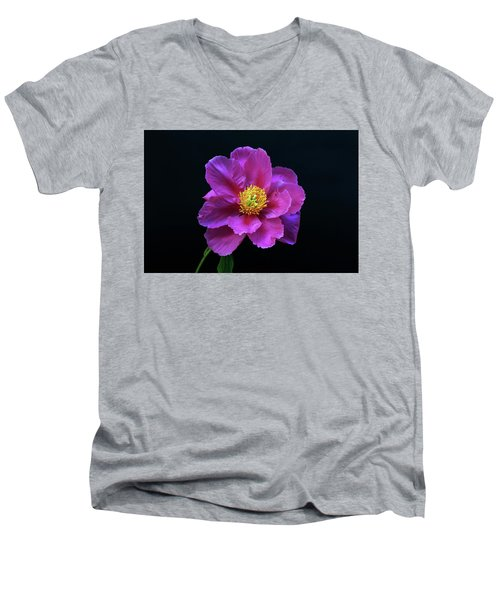 Peony - Beautiful Flowers And Decorative Foliage On The Right Is One Of The First Places Among The G Men's V-Neck T-Shirt