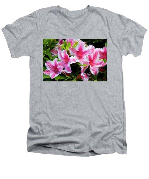 Peppermint Candy Men's V-Neck T-Shirt