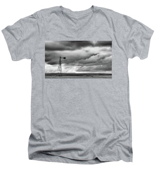 Perched And Looking Men's V-Neck T-Shirt