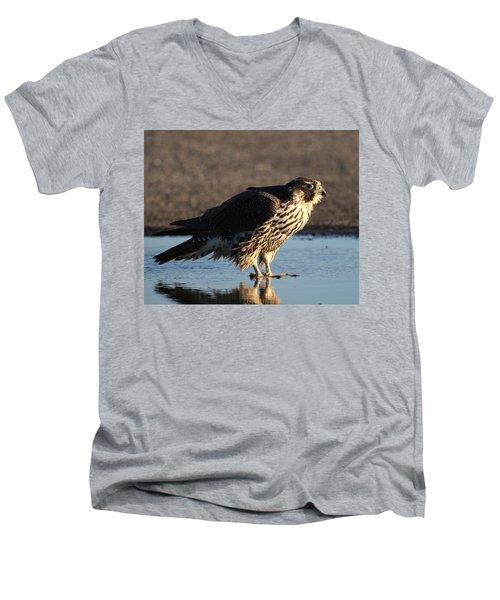 Peregrine Falcon Shirley New York Men's V-Neck T-Shirt by Bob Savage