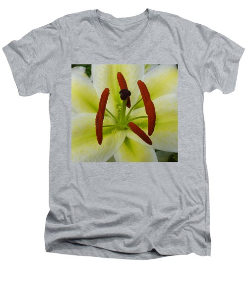 Perfect Beauty Men's V-Neck T-Shirt