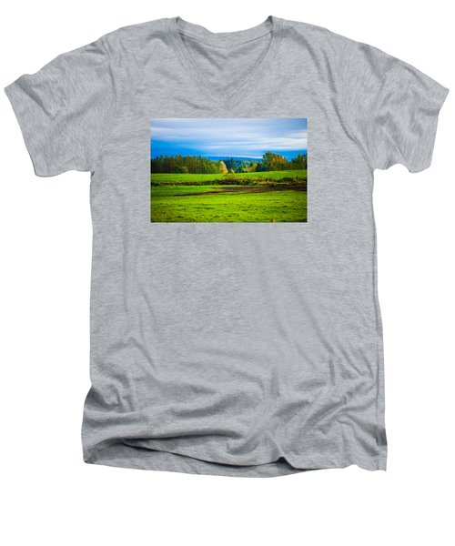 Perfect Place For A Meadow Men's V-Neck T-Shirt