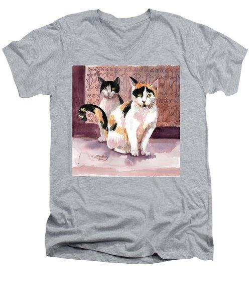 Perla And Sparks Men's V-Neck T-Shirt