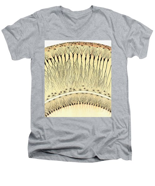Pes Hipocampi Major Santiago Ramon Y Cajal Men's V-Neck T-Shirt