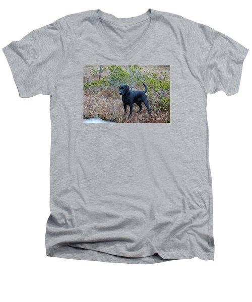 Pet Portrait - Radar Men's V-Neck T-Shirt