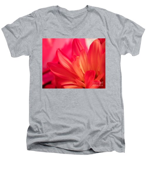 Petal Abstract Men's V-Neck T-Shirt