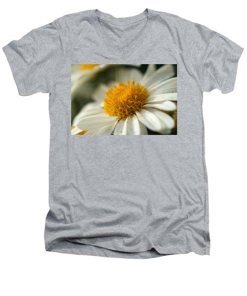 Petals And Pollen Men's V-Neck T-Shirt
