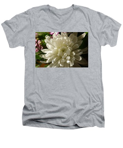 Petals Profusion Men's V-Neck T-Shirt