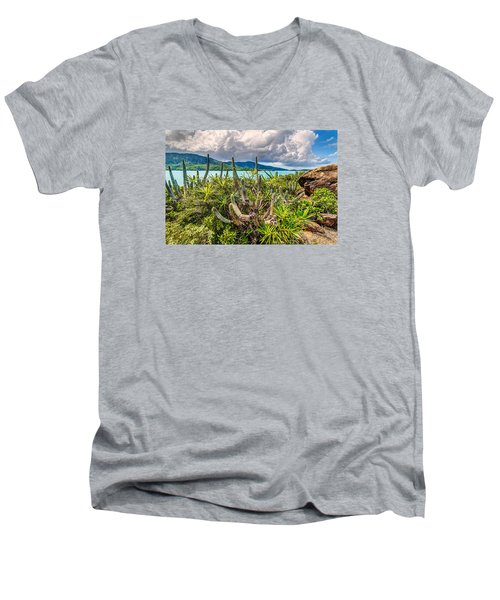 Peterborg Cactus Men's V-Neck T-Shirt