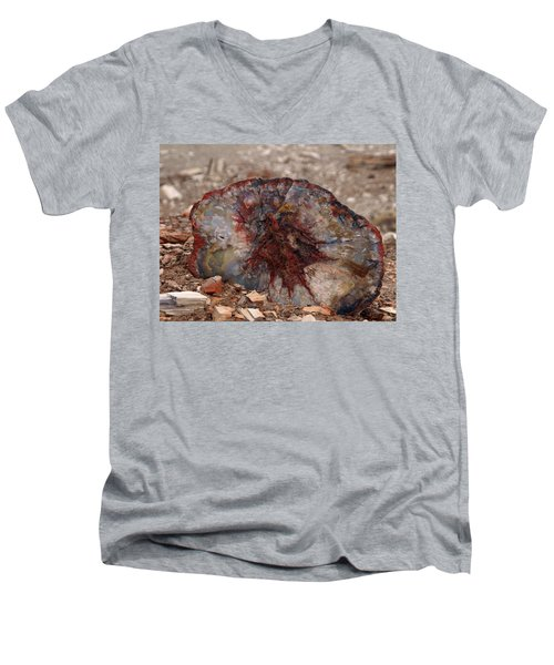 Men's V-Neck T-Shirt featuring the photograph Peterified Jewel by Melissa Peterson