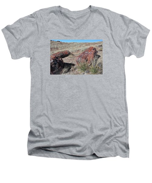 Men's V-Neck T-Shirt featuring the photograph Petrified Afternoon by Gary Kaylor