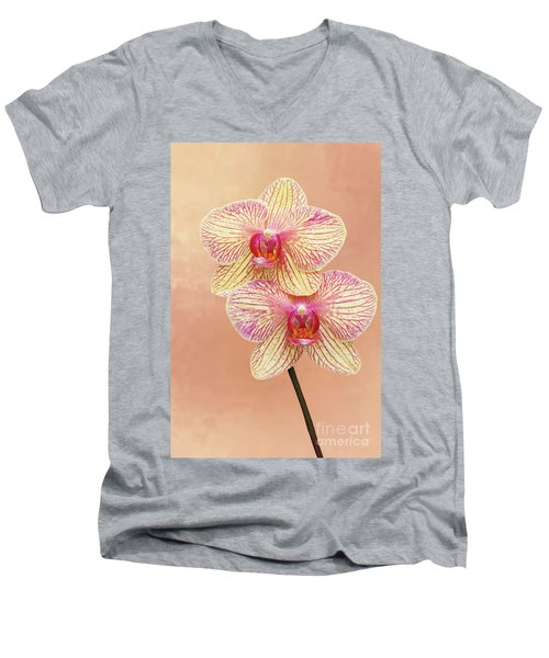 Phalaenopsis Moth Orchids #2 V2 Men's V-Neck T-Shirt