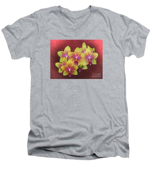 Phalaenopsis Orchid Flower Men's V-Neck T-Shirt by Suzanne Handel