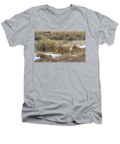 Men's V-Neck T-Shirt featuring the photograph Pheasant Glory by Yeates Photography