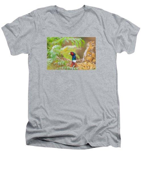 Pheasant Portrait Men's V-Neck T-Shirt