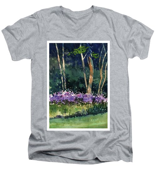 Phlox Meadow, Harrington State Park Men's V-Neck T-Shirt