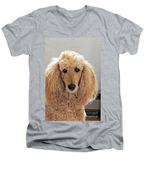 Men's V-Neck T-Shirt featuring the photograph Phoebe by Michele Penner
