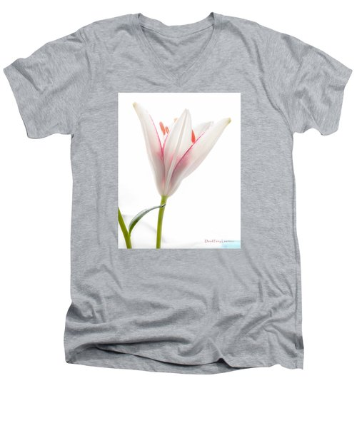 Men's V-Neck T-Shirt featuring the photograph Photograph Of A Pale Lily Opening I by David Perry Lawrence