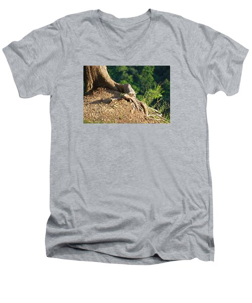 Picture Of A Tree On A Ledge Men's V-Neck T-Shirt