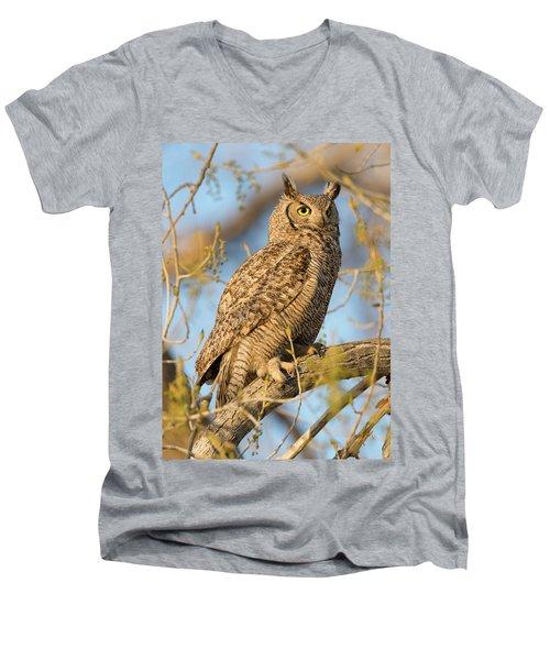 Picturesque Men's V-Neck T-Shirt by Scott Warner