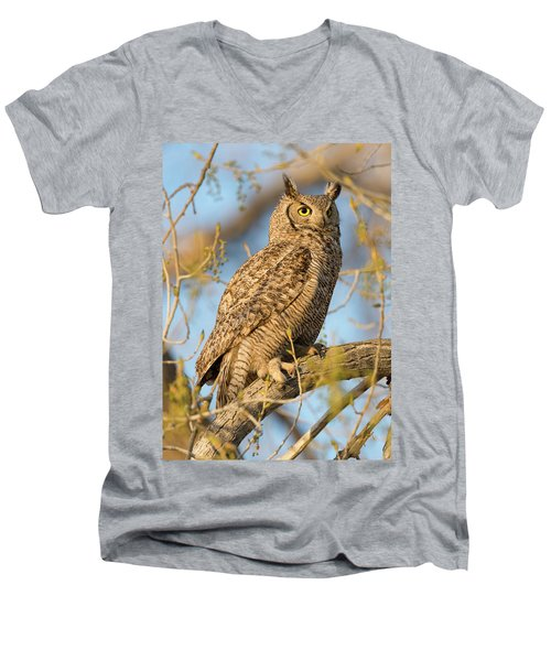 Picturesque Men's V-Neck T-Shirt