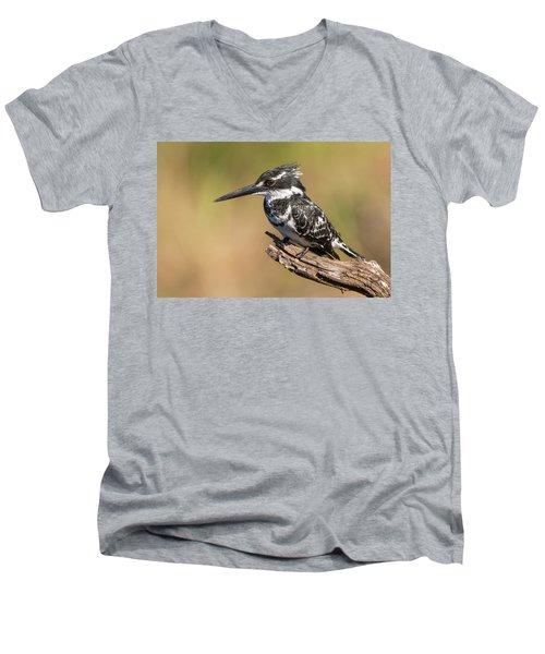 Pied Kingfisher Men's V-Neck T-Shirt