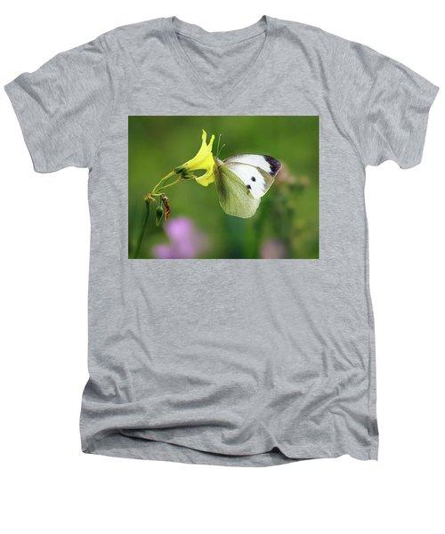 Pieris Rapae Men's V-Neck T-Shirt