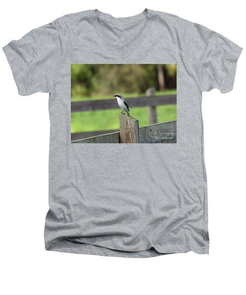 Pigeon-toed Shrike Men's V-Neck T-Shirt