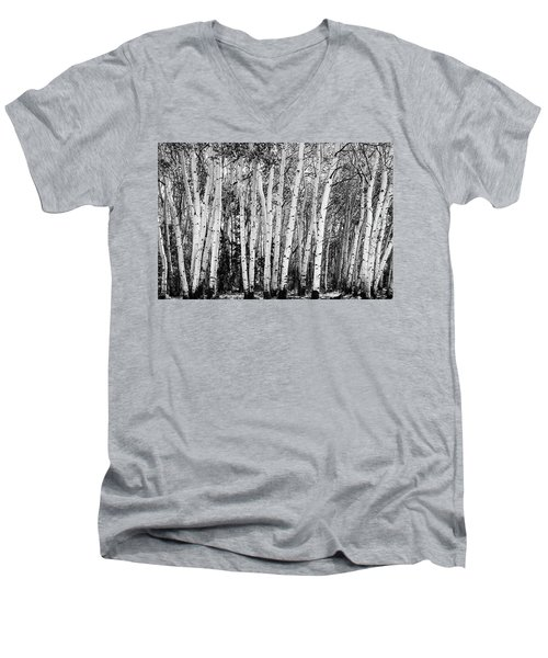 Pillars Of The Wilderness Men's V-Neck T-Shirt by James BO Insogna